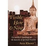 Visible Here and Now: The Buddhist Teachings on the Rewards of Spiritual Practice, Paperback/Ayya Khema