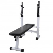 vidaXL Fitness Workout Bench Straight Weight Bench