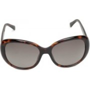 Fossil Over-sized Sunglasses(Brown)