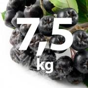 Fructe Congelate Aronia 7,5 kg (bio)
