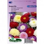 Callistephus Chinensis zaden Bouquet aster mix