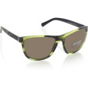 DKNY Round Sunglasses(Multicolor)