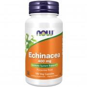 Now Foods Třapatka (Echinacea) 400 mg 100 kapslí - 100 kapslí