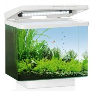 Juwel Aquarium VIO 40 Led - Zwart