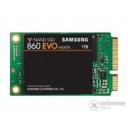 Samsung 860 EVO mSATA 1TB SSD (MZ-M6E1T0BW)
