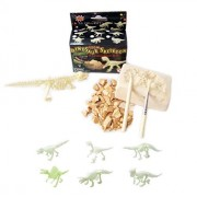 Small Glow in the Dark Dinosaur Excavation Kit