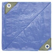 Dize Blue Poly Tarp - 24ft. x 36ft., Model PT2436
