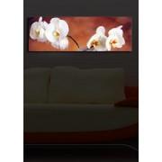 Tablou pe panza iluminat Shining, 239SHN1219, 30 x 90 cm, panza