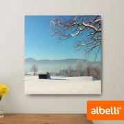 Albelli Foto op Plexiglas - Plexiglas Vierkant 40x40 cm.