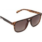 Fossil Wayfarer Sunglasses(Brown)