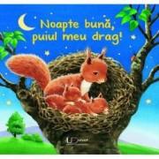 Noapte buna puiul meu drag