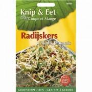 Radijskers DaikonKnip en eet
