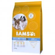 Iams Proactive Health Puppy & Junior Large con pollo - 12 kg