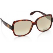 Roberto Cavalli Over-sized Sunglasses(Brown)