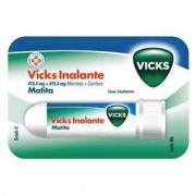 Procter & Gamble Srl Vicks Inalante*rin Fl 1g