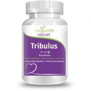 Natures Velvet Lifecare Tribulus Gokshura Gokhura Pure Extract 500 mg 60 Veg Capsules