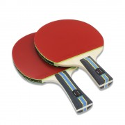 ZTON Table tennis racket Double pimples-in rubber Ping Pong Racket fast attack and loops or chop type player