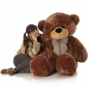 5feet Brown teddy for girls