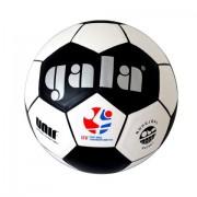 Nohejbalový míč Gala 5022 S