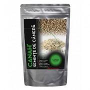 Canah seminte canepa 1 kg