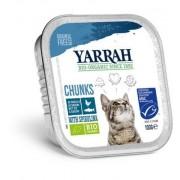 Yarrah Kat Alucup Chunks Met Vis (100g)
