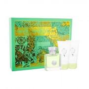 Versace Versense confezione regalo Eau de Toilette 50 ml + lozione per il corpo 50 ml + doccia gel 50 ml da donna