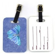 Caroline's Treasures 8855BT 4 x 2.75 in. Pair of Butterfly on Slate Blue Luggage Tag(Multicolor)