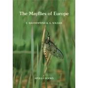 The Mayflies of Europe (Ephemeroptera)