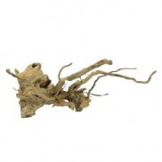 Akváriumi fagyökér - Old Twity Wood - 49 x 32 x 21 cm