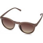 Fastrack Retro Square Sunglasses(Brown)