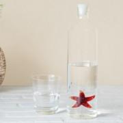 Balvi Waterfles - Zeester - Balvi
