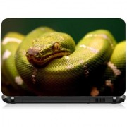 VI Collections Greenish Snake Printed Vinyl Laptop Decal 15.5