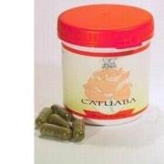 MEDICAL BIOECOLOGICAL INSTRUM. Catuaba Dr Pock 50cps (912953977)