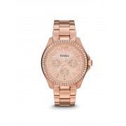 Ceas Fossil multifunctional Cecile AM4483