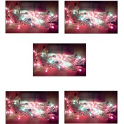 Ever Forever Rice Light in Multi Color 3-3.5 Meter Long Approx (Pack of 5)