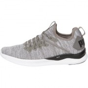Puma Men's Grey IGNITE Flash evoKNIT Running shoes