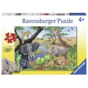 PUZZLE ANIMALE SAFARI, 60 PIESE - RAVENSBURGER (RVSPC09600)