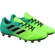 Adidas ACE 17.4 FXG Football Shoes(Green, Black)