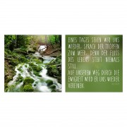 Afbeeldingen Dauwdruppels aan de rivier