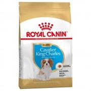 Royal Canin Cavalier King Charles Puppy / Junior - 1,5 kg