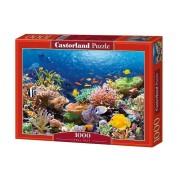 Puzzle Recif de corali, 1000 piese