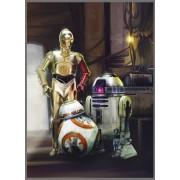 Star Wars poszter 4447