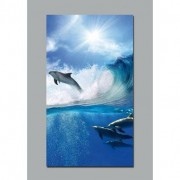 stickers folies Poster dauphins