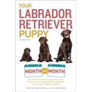 Your Labrador Retriever Puppy Month by Month, 2nd Edition: Everything You Need to Know at Each Stage to Ensure Your Cute & Playful Puppy Gr, Paperback