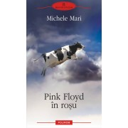 Pink Floyd in rosu (eBook)