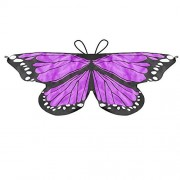 LIVEBOX Monarch Butterfly Wings Shawl Cape Scarf Fanciful Fabric Dance Wing Dress Up Kids Costume Accessary (Purple)