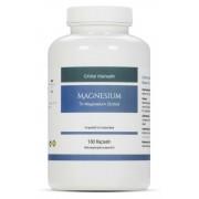 Tri-Magnesium Dicitrat hoch konzentriert von EXVital VitaHealth, 18...