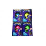 Pack of 4 Unicorn Hatching Eggs
