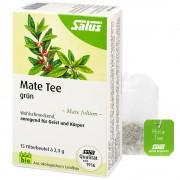 SALUS Pharma GmbH Salus® Mate Tee