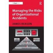 Ashgate Pub Ltd Managing the Risks of Organizational Accidents